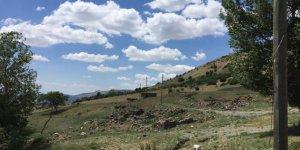Tercan Yamanlar Köyü