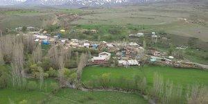 Tercan Yuvalı Köyü