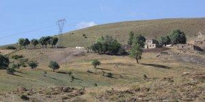 Üzümlü Pelitli Köyü