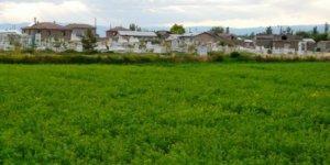 Erzincan Mahmutlu Köyü