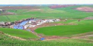 Sur Yarımca Köyü