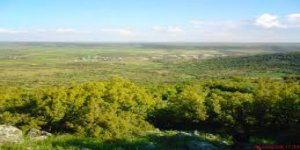 Pazarcık Yeniyurt Köyü