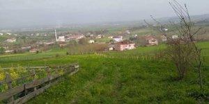 Tekkeköy Gökçe Köyü