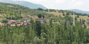 Zile Yeniderbent Köyü