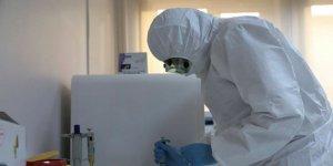 Cezayir'de ilk koronavirüs vakası tespit edildi