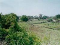 Adana Karaisalı Sarıkonak Köyü