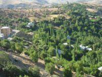 Adıyaman Gerger Ağaçlı Köyü