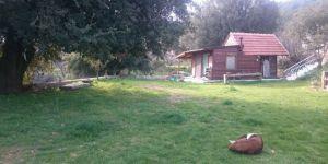 Antalya Kaş Pınarbaşı Köyü