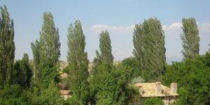 Antalya Kaş Yaylakılıçlı Köyü