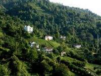 Artvin Dereüstü Köyü
