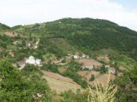Kocaeli Camidüzü Köyü