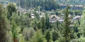 Antalya Manavgat Burmahan Köyü