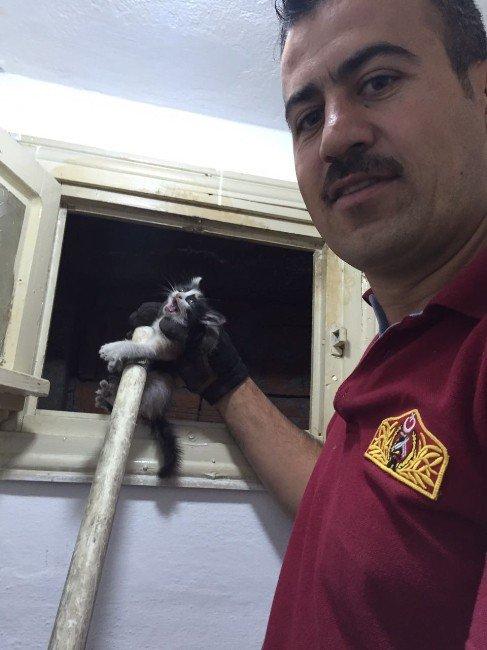 Yavru Kedi İtfaiye Ekipleri Tarafından Kurtarıldı