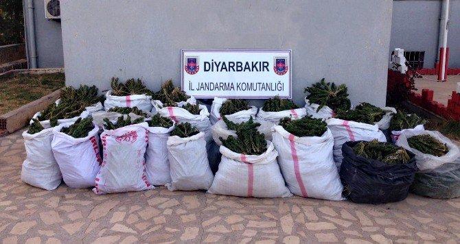 Diyarbakır'da 306 Kilo Esrar Ele Geçirildi