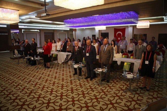 Türkiye, Çilek Üretiminde Dünyada 3. Sırada