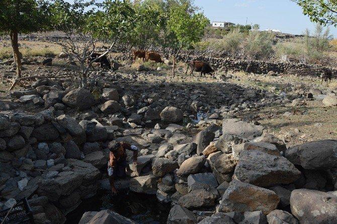 Şebeke Suları Kesilen Köylüler, Kuyu Suyu İçmek İstemiyor