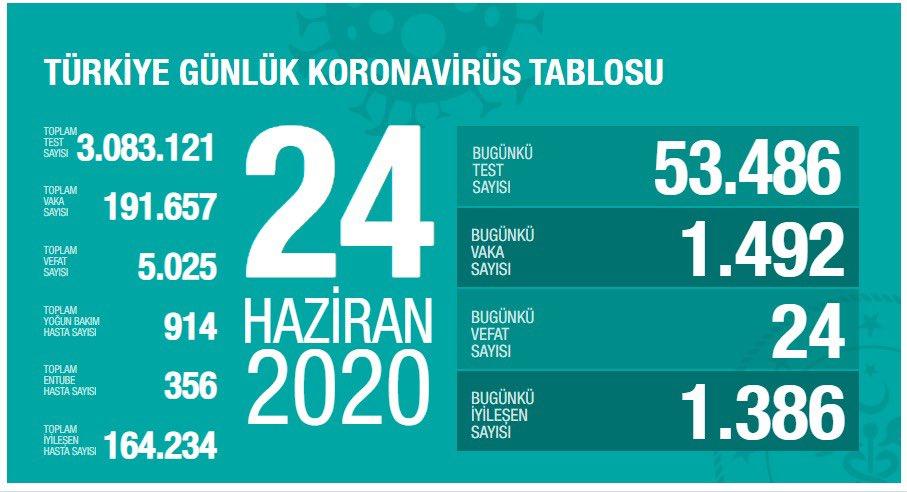 turkiye-vaka-sayisi-24-haziran.jpg