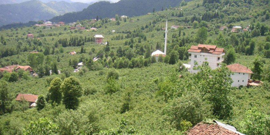 Araklı Ayvadere Köyü Videosu