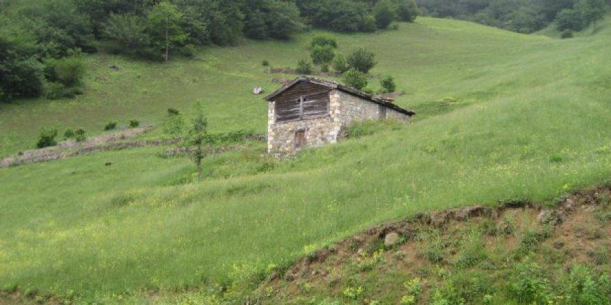 Araklı Çiftepınar Köyü Videosu