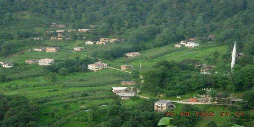 Araklı Çukurçayır Köyü