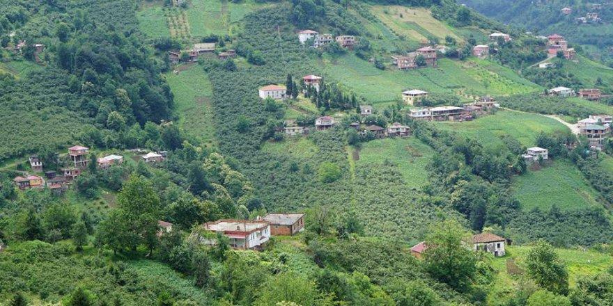 Akçaabat Ağaçlı Köyü Videosu