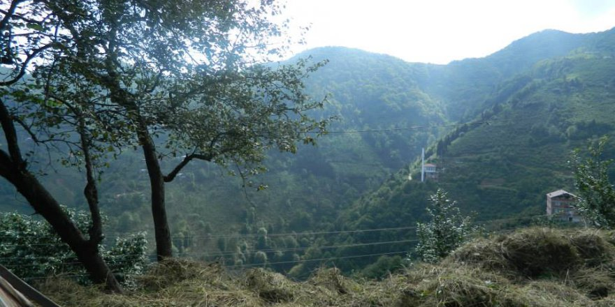 Araklı Karatepe Köyü Videosu