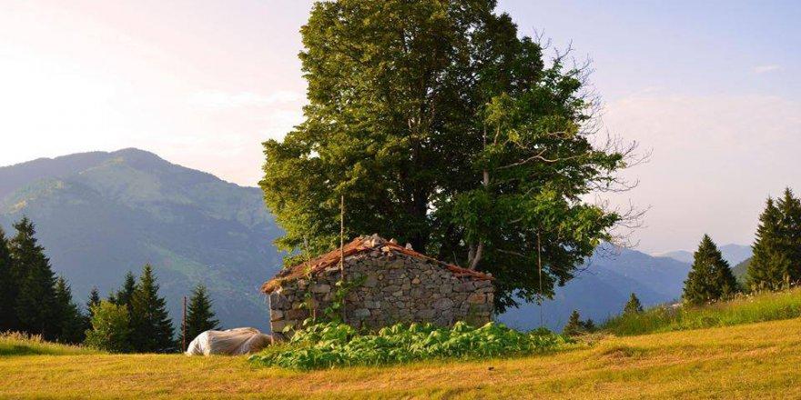 Araklı Köprüüstü Köyü Videosu
