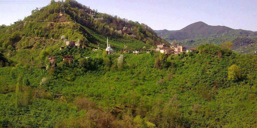 Araklı Yassıkaya Köyü Videosu