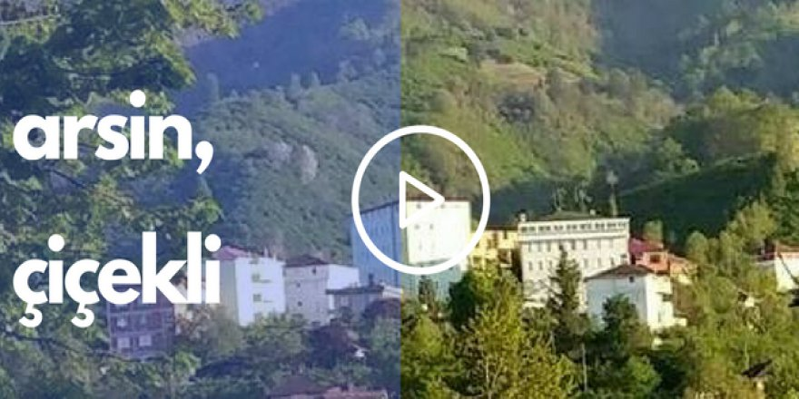 Arsin Çiçekli Köyü Videosu