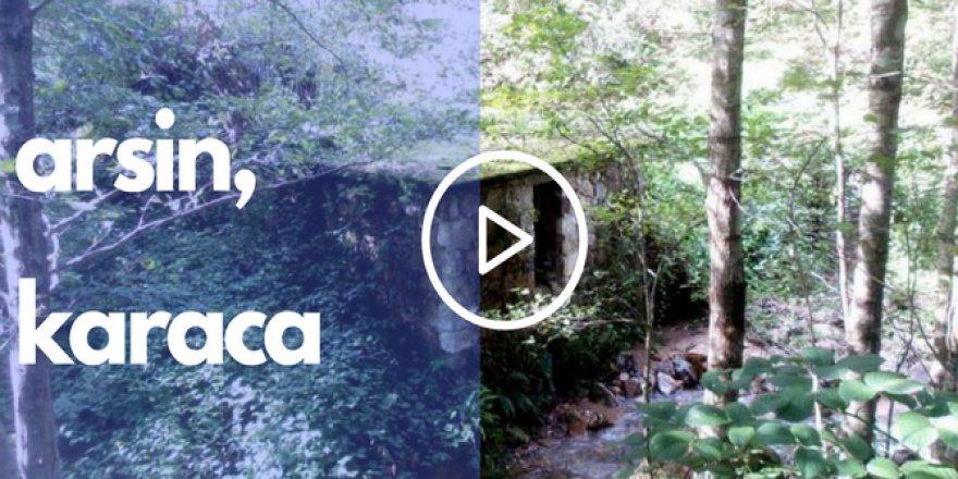 Arsin Karaca Köyü Videosu