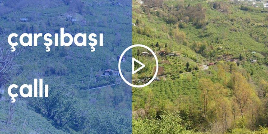 Çarşıbaşı Çallı Köyü Videosu