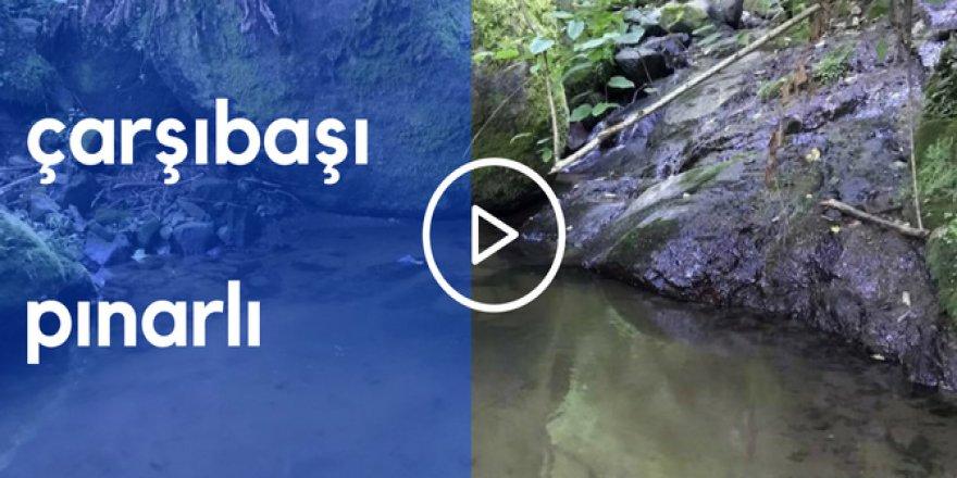 Çarşıbaşı Pınarlı Köyü Videosu