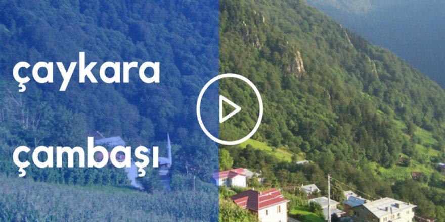 Çaykara Çambaşı Köyü Videoları