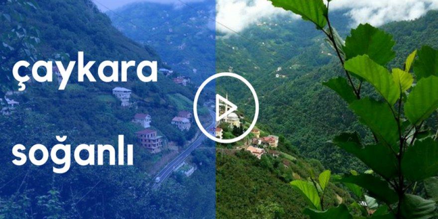 Çaykara Soğanlı Köyü Videoları