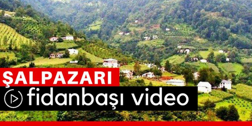 Şalpazarı Fidanbaşı Köyü Video