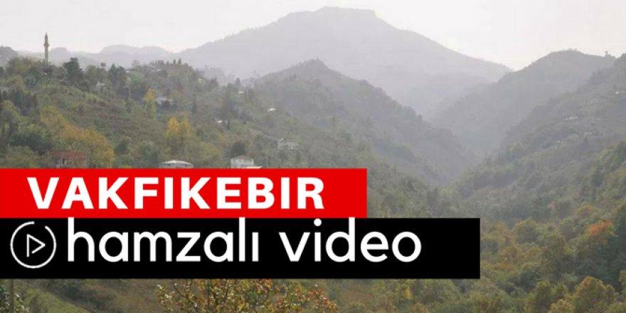 Vakfıkebir Hamzalı Köyü Video