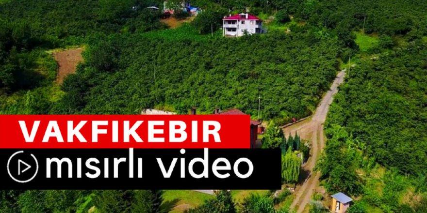 Vakfıkebir Mısırlı Köyü Video