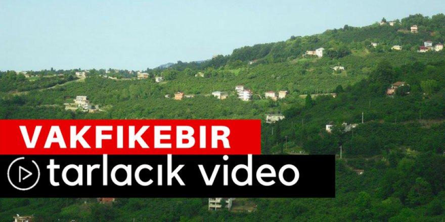 Vakfıkebir Tarlacık Köyü Video