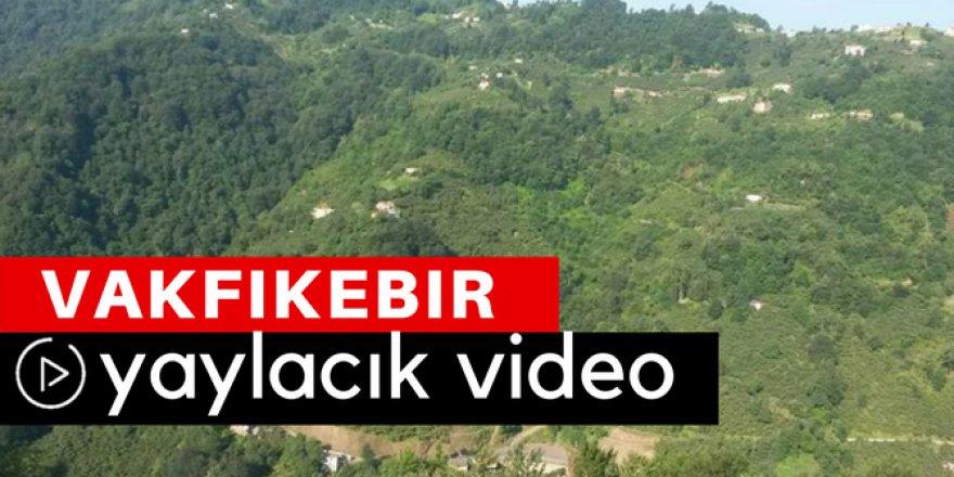 Vakfıkebir Yaylacık Köyü Video