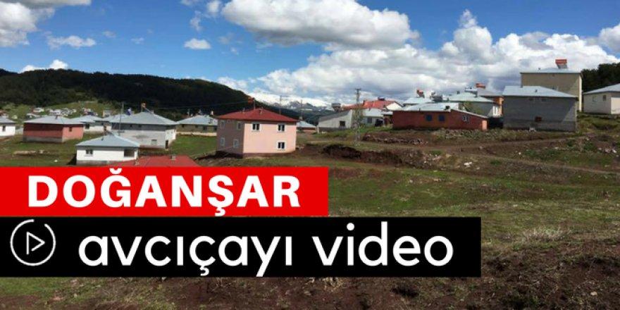 Doğanşar Avcıçayı Köyü Video