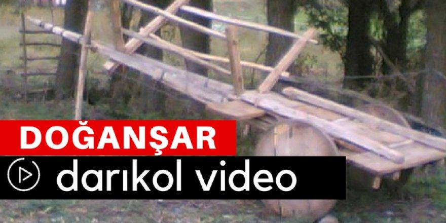 Doğanşar Darıkol Köyü Video