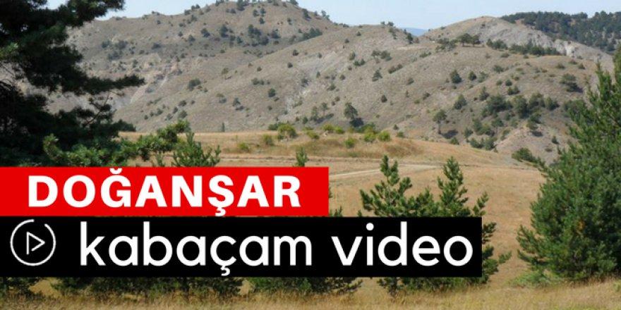 Doğanşar Kabaçam Köyü Video