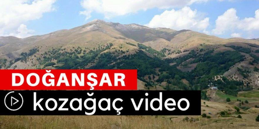 Doğanşar Kozağaç Köyü Video