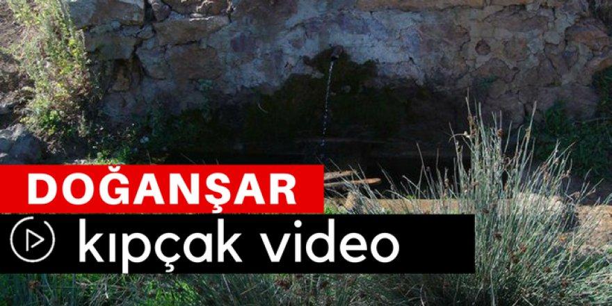 Doğanşar Kıpçak Köyü Video