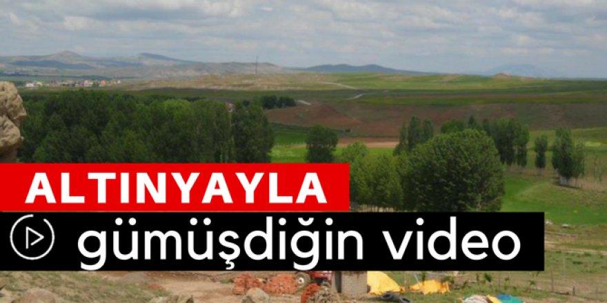Altınyayla Gümüşdiğin Köyü Video