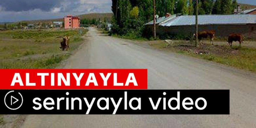 Altınyayla Serinyayla Köyü Video