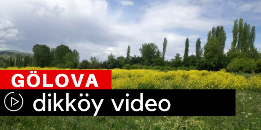 Gölova Dikköy Video