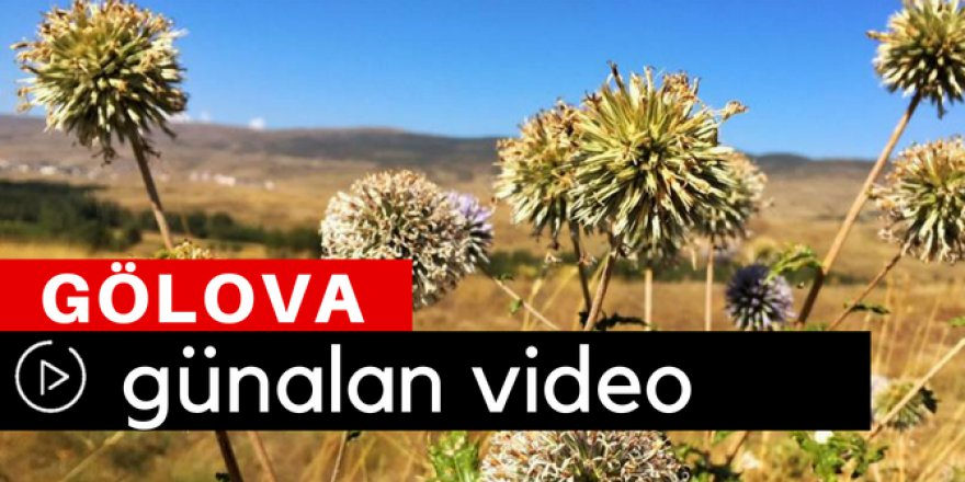 Gölova Günalan Köyü Video