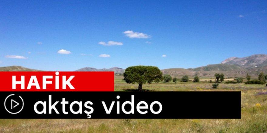 Hafik Aktaş Köyü Video