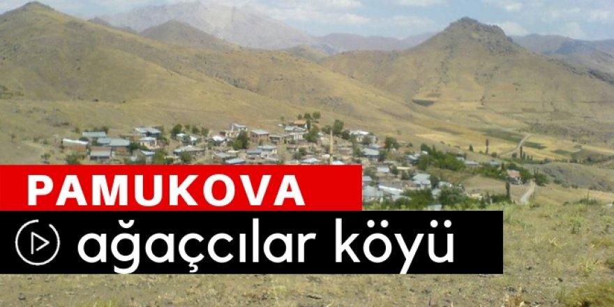 Pamukova Ağaççılar Köyü Video